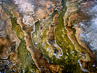 Yellowstone Art-1